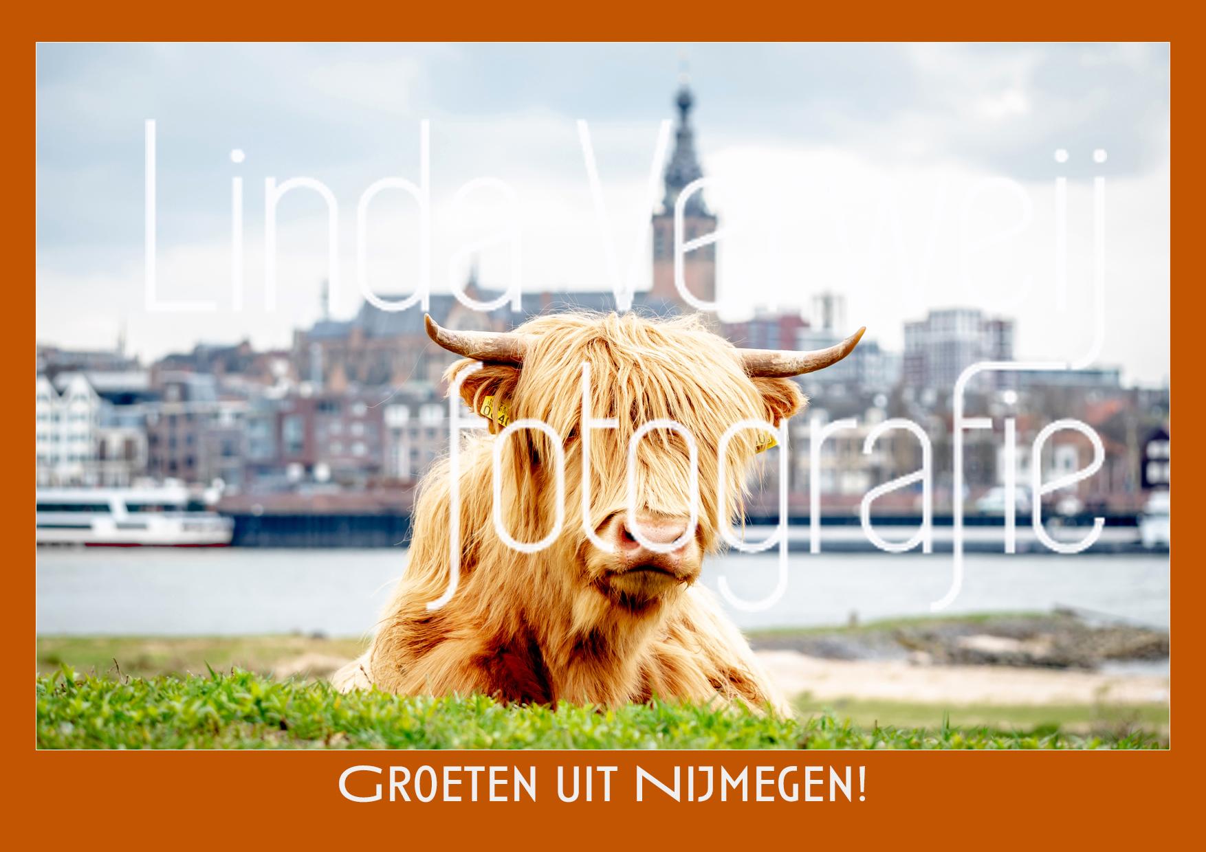 Ansichtkaart Foto Nijmegen Oranje